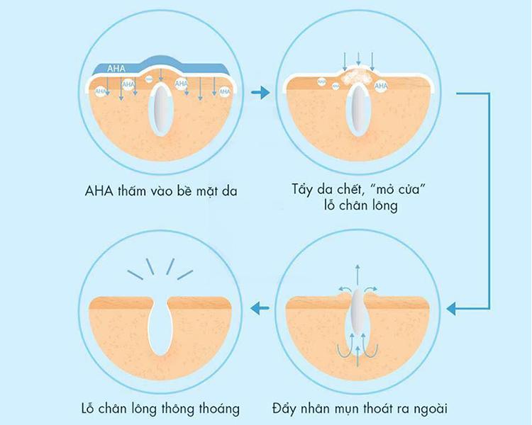 Cơ chế hoạt động của AHA lên da